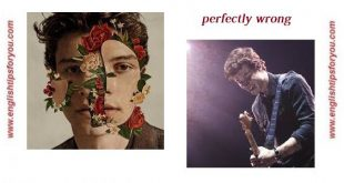 Shawn Mendes - Perfectly Wrong -englishtipsfpryou.com (Copy)