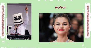Selena Gomez & Marshmello - Wolves - englishtipsforyou.com