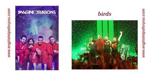 Imagine Dragons - Bird.englishtipsforyou.com