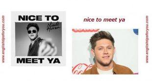 Niall Horan - Nice To Meet Ya.englishtipsforyou.com